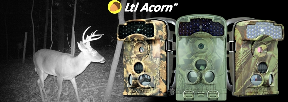 Ltl-Acorn-Slider
